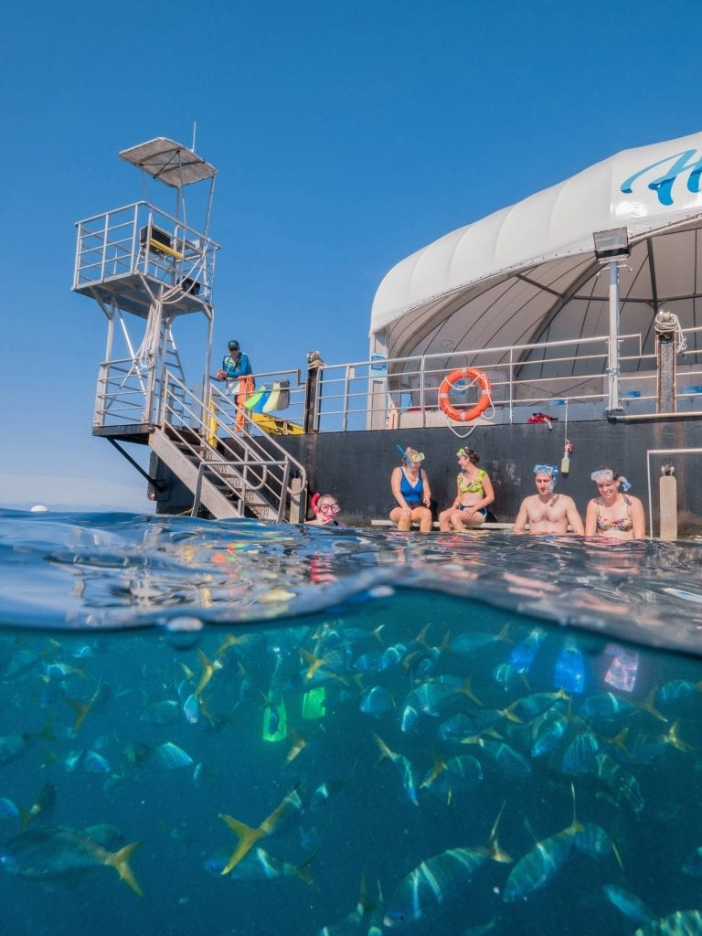 Festival cruise to the Great Barrier Reef