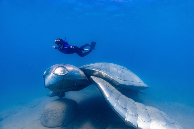 Take an exclusive tour to the Whitsundays' underwater art